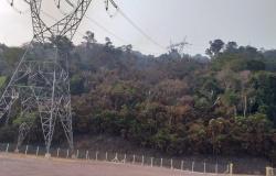 Corpo de Bombeiros faz avaliação de incêndio florestal na área da usina hidrelétrica São Manoel