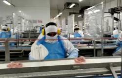 Covid-19: MPT já ajuizou seis ações e instaurou mais de 15 inquéritos civis contra frigoríficos de MT