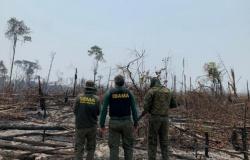 Homem é preso em Colniza ao atear fogo em mata
