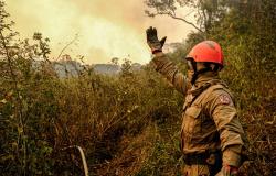 Bombeiros alertam para riscos do uso indevido de técnicas de combate aos incêndios florestais