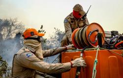 Governador reforça pedido ao Governo Federal de aeronaves e tropas para combater incêndios