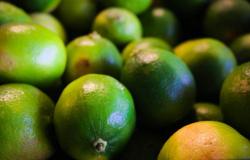 Preço de frutas e verduras sobe mais de 150% em Mato Grosso