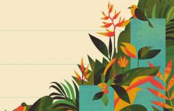 3 trilhões de reais pela Amazônia: empresas pressionam governo