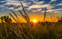 Estudo propõe calendário para evitar perdas com El Niño e La Niña