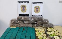 Sorriso: Polícia apreende 10kg de supermaconha e encontra até torta de maça com droga