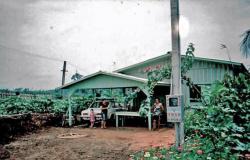 Madeseik: Defensoria evita remoção de famílias e pede regularização fundiária de área do Distrito Industrial de Alta Floresta