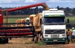 Caem os preços dos fretes de Mato Grosso para o Pará