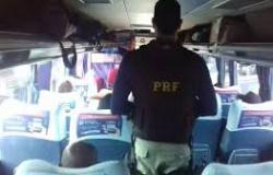 PRF prende homem transportando drogas em ônibus na BR-364; ele levaria droga para Alta Floresta