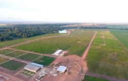Em Alta Floresta, confinamento de gado ajuda fazenda a triplicar desfrute