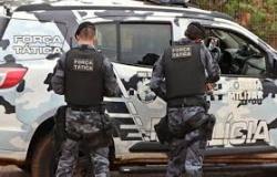 Alta Floresta: Suspeitos de tráfico são detidos por tráfico de drogas na rodovia MT-208