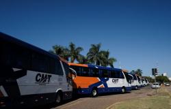 Governo do Mato Grosso habilita quatro empresas para atuar no transporte intermunicipal rodoviário