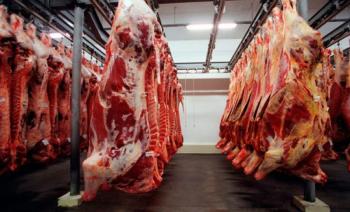 Ano de 2020 deixa saldo positivo para a carne bovina em MT
