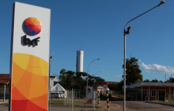 Frigorífico oferece 322 vagas de emprego em Mato Grosso