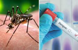 ALTO RISCO: Dengue causou 17 mortes e casos aumentaram 158% em MT