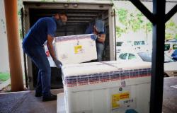 Mato Grosso recebe 11 mil doses da CoronaVac nesta segunda-feira (25)