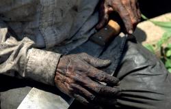 MT - Trabalho escravo e aliciamento e tráfico de trabalhadores motivam mais de 6 mil denúncias ao MPT nos últimos cinco anos