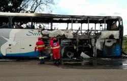 Ônibus interestadual que saiu do nortão de MT pega fogo na BR-060 em Goiás, ocupantes saem ilesos