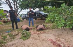 JUARA: Atirador mata dois homens com tiros na cabeça em lanchonete durante a madrugada