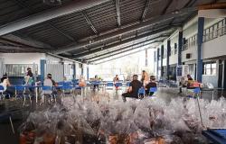 Alta Floresta: Escola Estadual antecipa entrega de kits de alimentação para 200 estudantes