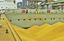 Com destaque no agro, MT foi o 2º maior exportador em janeiro