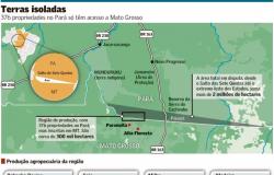CADEIA PRODUTIVA: Produtores de Alta Floresta e Paranaíta na divisa do Pará vivem incerteza tributária