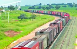 Estudo identifica 40 impactos negativos da Ferrogrão entre MT e PA
