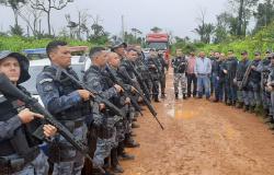Polícias Civis de MT e do Pará prendem integrante de quadrilha de roubo de gado que agia no nordeste do estado
