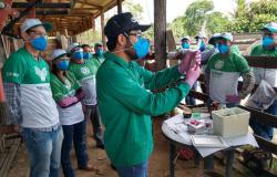 Curso de vacinação contra a brucelose é realizado pelo SENAR em Nova Monte Verde