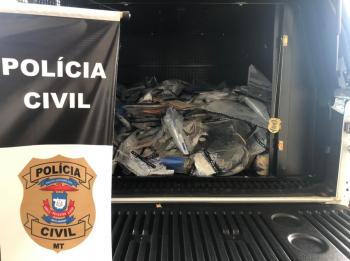 Juina: Polícia Civil incinera aproximadamente 180 quilos de entorpecentes apreendidos nos últimos quatro anos