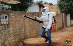 Mutirão de limpeza terá início nesta segunda em Colíder