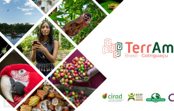 Projeto que apoia geração de renda e conservação ambiental é iniciado em Cotriguaçu