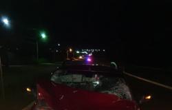 Cavalos soltos em rodovia causam acidente em Nova Canaã do Norte