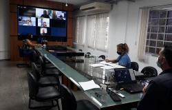 Conselho de Pesca se reúne em transmissão ao vivo e aprova calendário de 2021