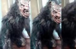 LOBISOMEM?: cena inusitada viralizou nas redes sociais.