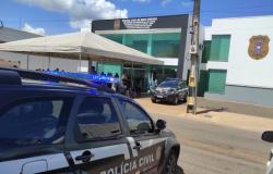 PRIMAVERA DO LESTE:  Policiais civis averiguam denúncia e resgatam animais em situação de maus tratos