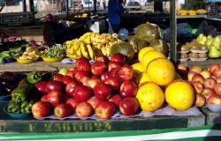 Feiras livres são reconhecidas como essenciais à segurança alimentar em MT