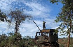 CRIME AMBIENTAL: Operação apreende 4 tratores e aplica R$ 30 milhões em multas