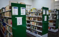 Plataforma possibilita empréstimo gratuito de livros em formato digital
