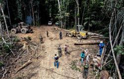 Apreensão de maquinários flagrados em desmate ilegal pela Sema-MT interrompe ciclo de crimes ambientais