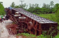 VICINAL PRIMEIRA OESTE: Caminhão carregado de gado tomba ao tentar passar ponte em AF