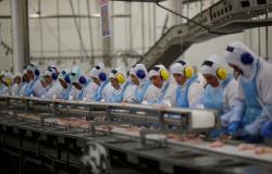 Frigorífico é condenado a pagar R$ 1 milhão por permitir que funcionários trabalhassem sem intervalo em MT