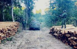 Batalhão Ambiental encaminha homem à Delegacia após flagrante de extração ilegal de madeira