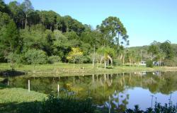 Florestas Nacionais qualificadas para concessão seguirão modelo de manejo sustentável