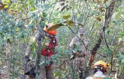 Bombeiros resgatam homem que passou 4 dias perdido na mata em Guarantã do Norte
