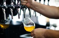 MT está entre os 10 estados com maior concentração de cervejarias