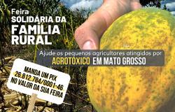 Paranaíta: ICV cria campanha para ajudar produtores que tiveram propriedades atingidas por agrotóxicos