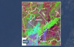 Seca atinge Mato Grosso mais cedo este ano