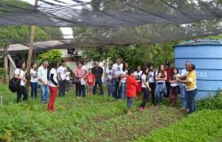 Seciteci abre 270 vagas para o curso gratuito de Agropecuária