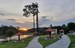 Turismo em Alta Floresta-MT: uma experiência amazônica