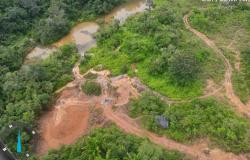 Estado flagra 28 garimpos clandestinos para exploração de ouro